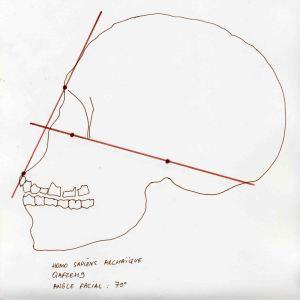 Atala Archaic Homo Sapiens Qafzeh 9 Kafzeh IX