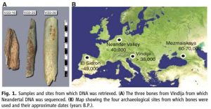 Atala Map Neanderthal samples sites genetic studies Paabo Max Planck