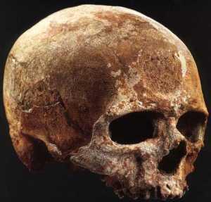 Atala Cro Magnon skull