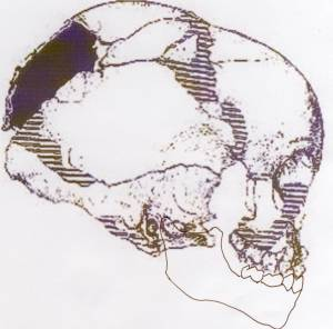 Atala Pech de l'Azé child baby skull