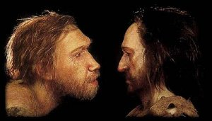 Atala Neanderthal Sapiens Cro Magnon Representation picture