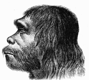 Atala Neanderthal Representation Picture