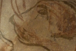 Chauvet IV