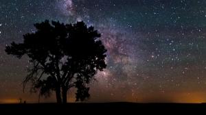 Wild-Wyoming-Nuit-etoilée